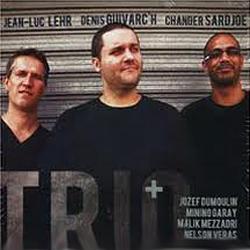 Denis Guivarc'h Trio